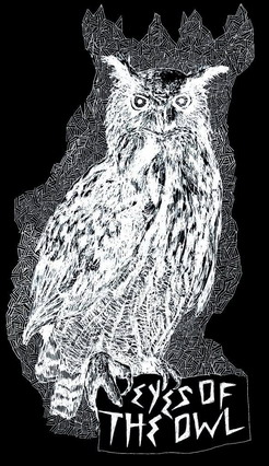EYES OF THE OWL picture