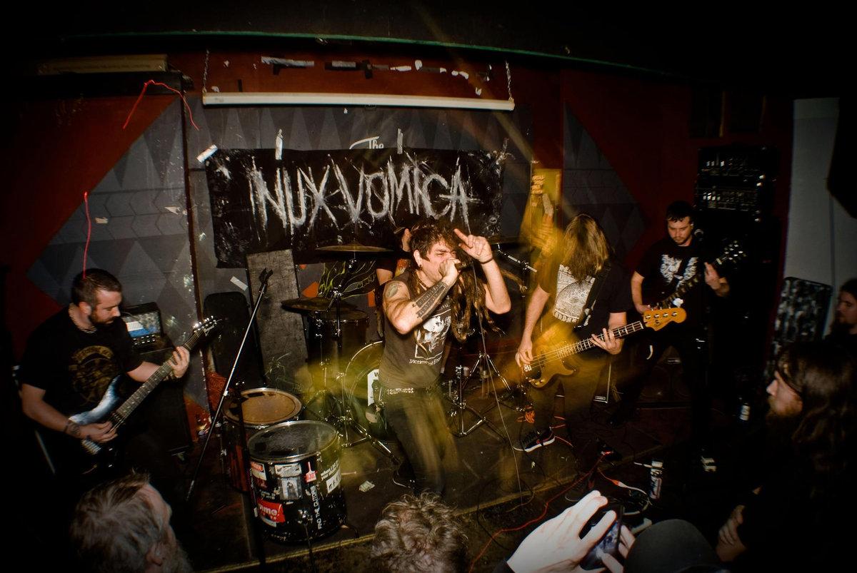 NUX VOMICA picture