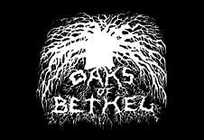 OAKS OF BETHEL picture