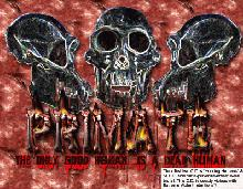 PRIMATE picture