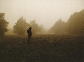 WOODS OF DESOLATION picture