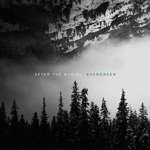 AFTER THE BURIAL - Evergreen cover
