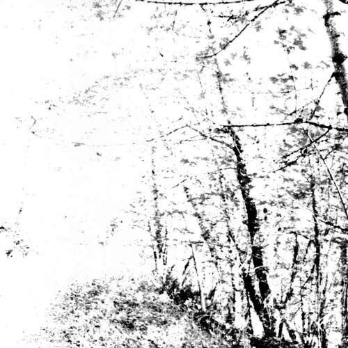 AGALLOCH - The White EP cover