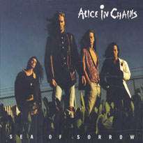 ALICE IN CHAINS - Sea Of Sorrow cover