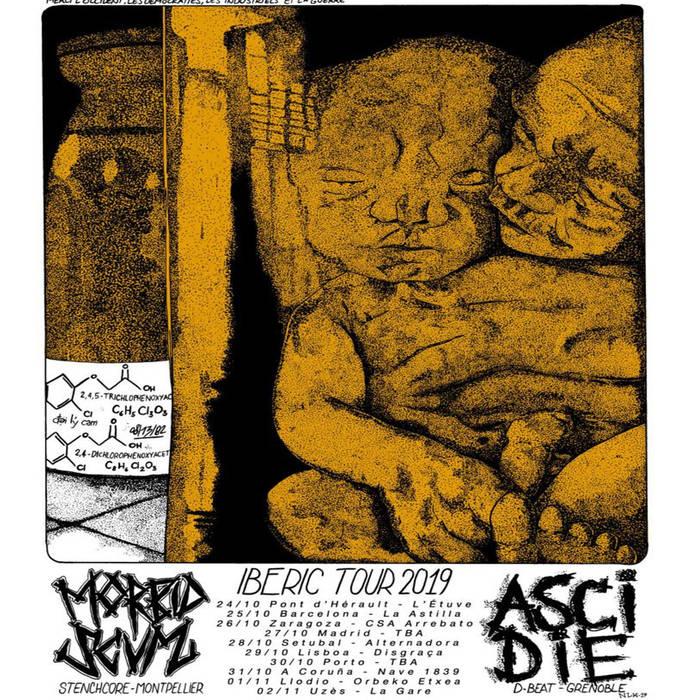 ASCIDIE - Morbid Scum / Ascidie cover