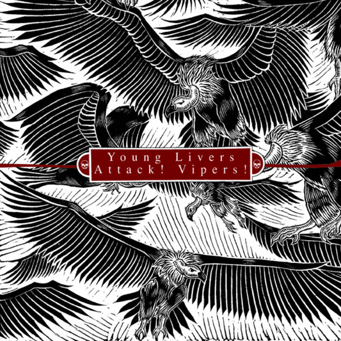 ATTACK! VIPERS! - Young Livers / Attack! Vipers! cover