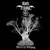 BLACK FUNERAL - Waters of Weeping cover