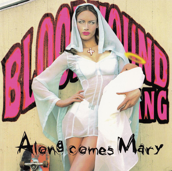 BLOODHOUND GANG - Along Comes Mary cover