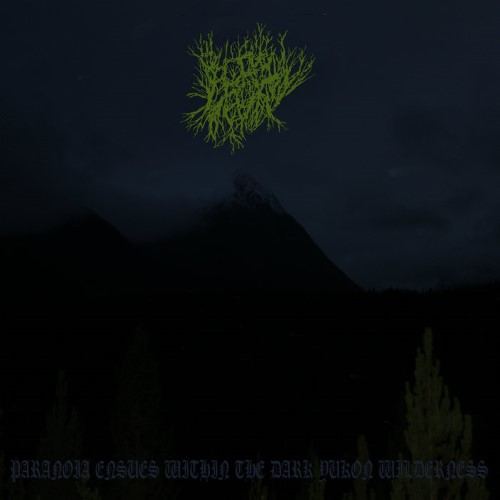 BOREAL DECAY - Paranoia Ensues Within the Dark Yukon Wilderness cover
