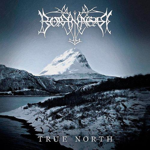 BORKNAGAR - True North cover