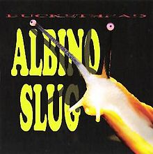 BUCKETHEAD - Albino Slug cover
