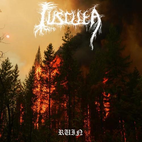 CUSCUTA - Ruin cover