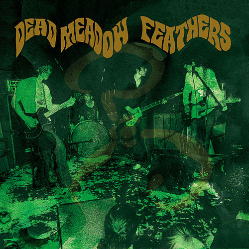 DEAD MEADOW - Feathers cover
