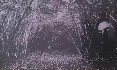 DEMSTERVOLD - Den Svartne Spökerii cover
