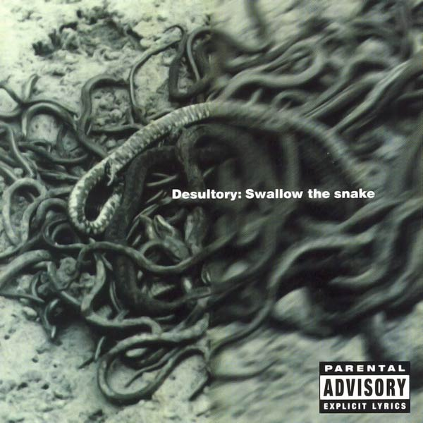 DESULTORY - Swallow the Snake cover
