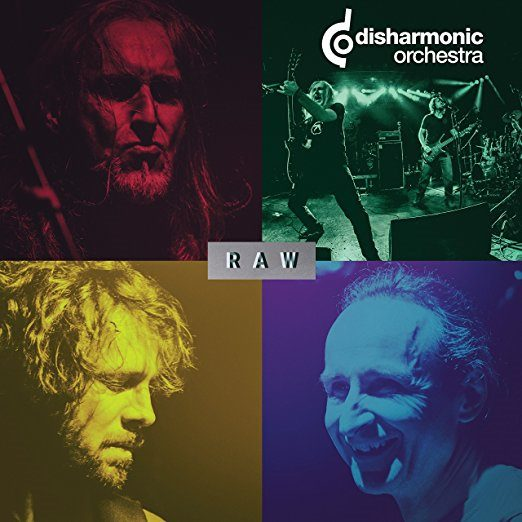 DISHARMONIC ORCHESTRA - Raw cover