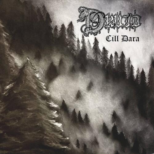 DRUID - Cill Dara cover