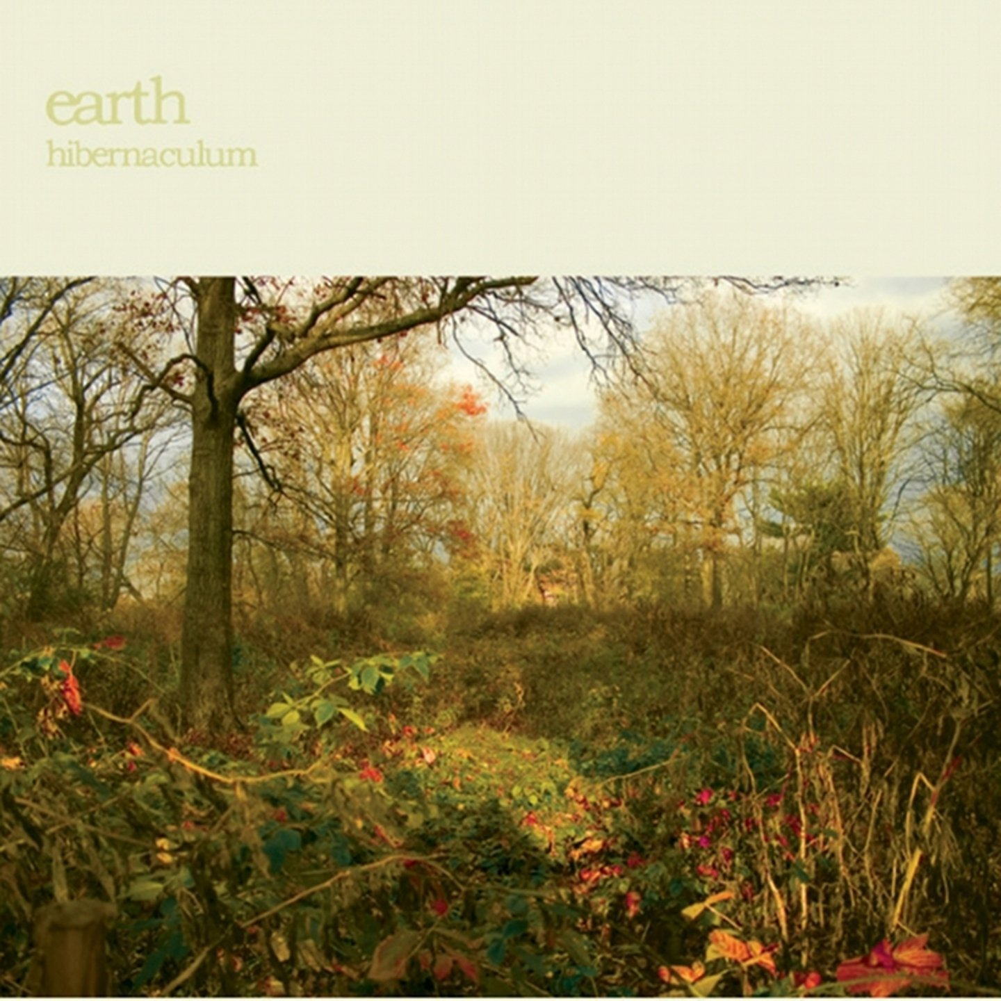 EARTH - Hibernaculum cover
