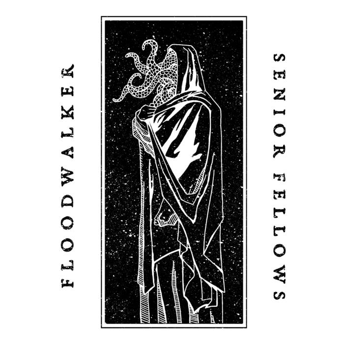 FLOODWALKER - Floodwalker / Senior Fellows cover