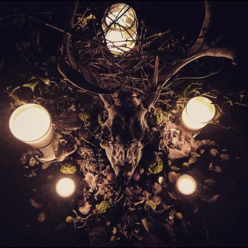 GREYWOODS - Hellgazer cover