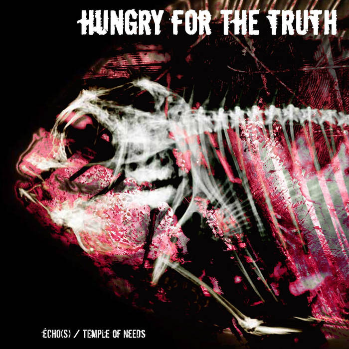 HUNGRY FOR THE TRUTH - Écho​(​s) & Temple Of Needs cover