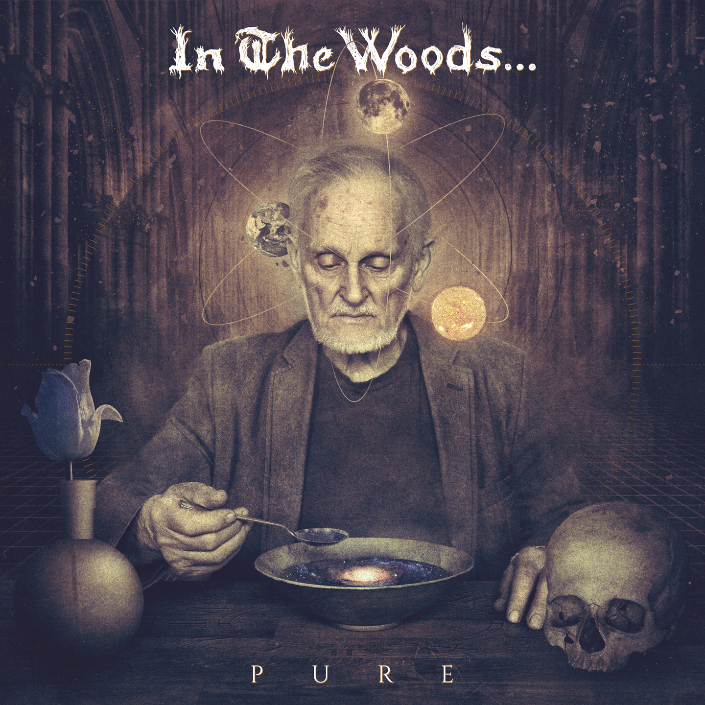 IN THE WOODS... - Pure cover