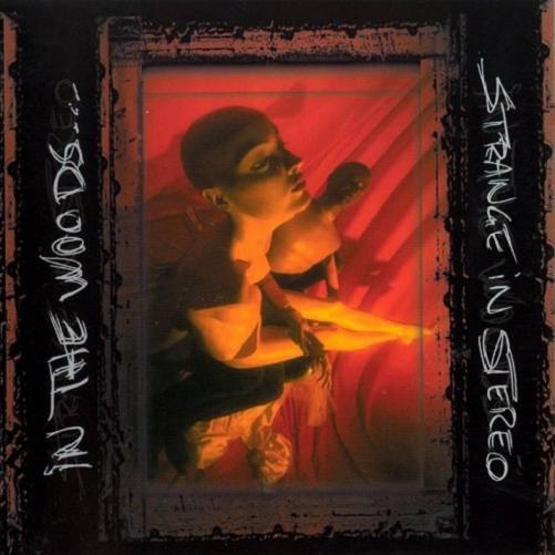 IN THE WOODS... - Strange in Stereo cover