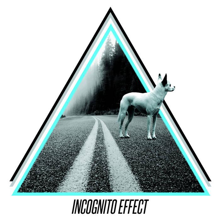 INCOGNITO EFFECT - Fata Morgana cover