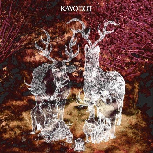KAYO DOT - Blue Lambency Downward cover