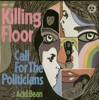 KILLING FLOOR - Call For The Politicians / Acid Bean cover