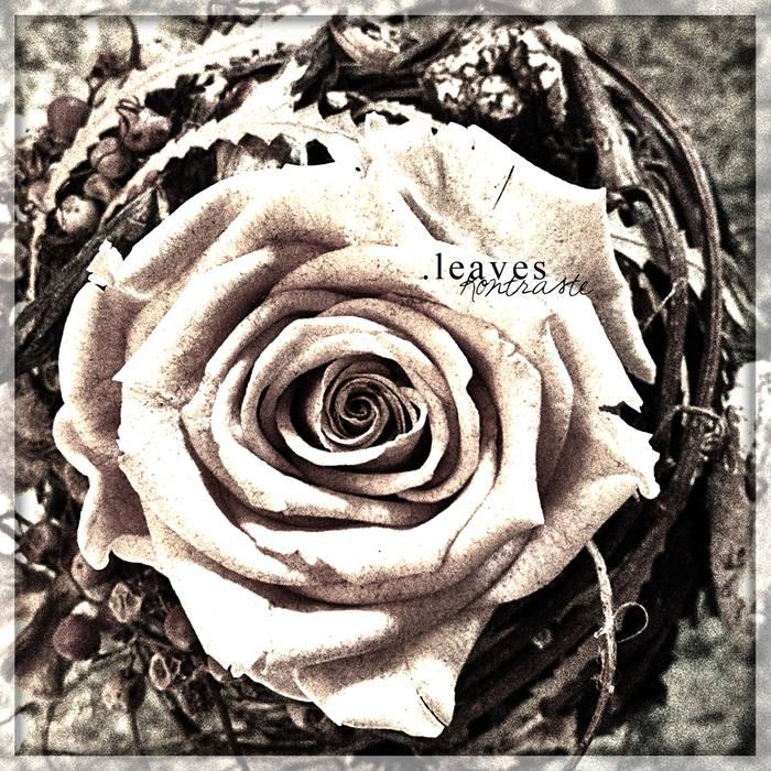 .LEAVES - Kontraste cover