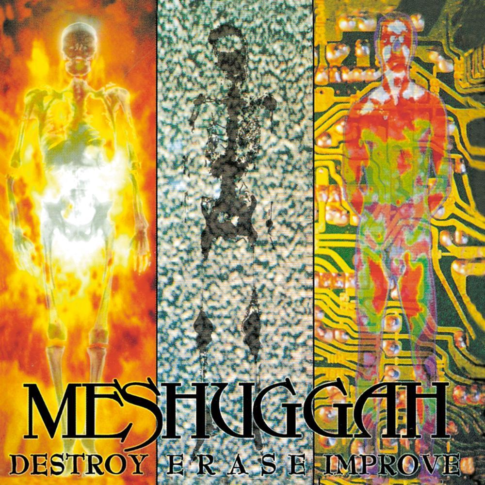 MESHUGGAH - Destroy Erase Improve cover