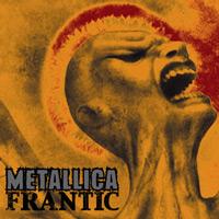 METALLICA - Frantic cover