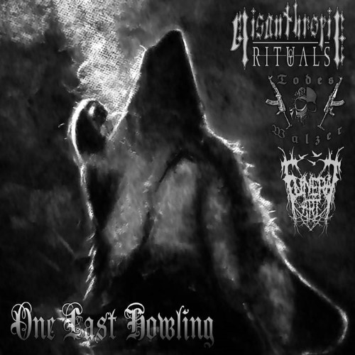 MISANTHROPIC RITUALS - One Last Howling cover