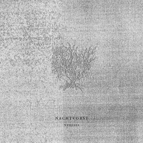 NACHTVORST - Verlies cover