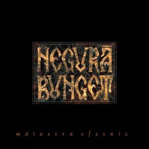 NEGURĂ BUNGET - Maiastru sfetnic cover