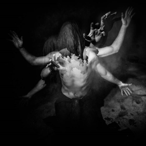 NEPHILIM'S HOWL - Through the Marrow of Human Suffering cover