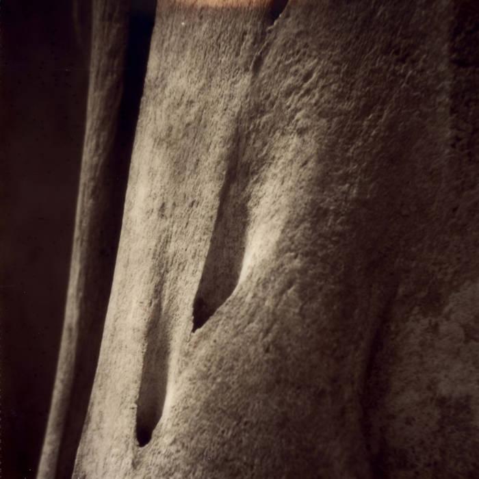 NÉVOA - Towards Belief cover