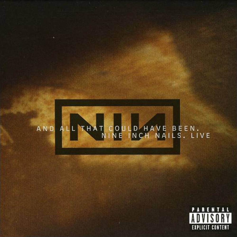NINE INCH NAILS And All That Could Have Been reviews