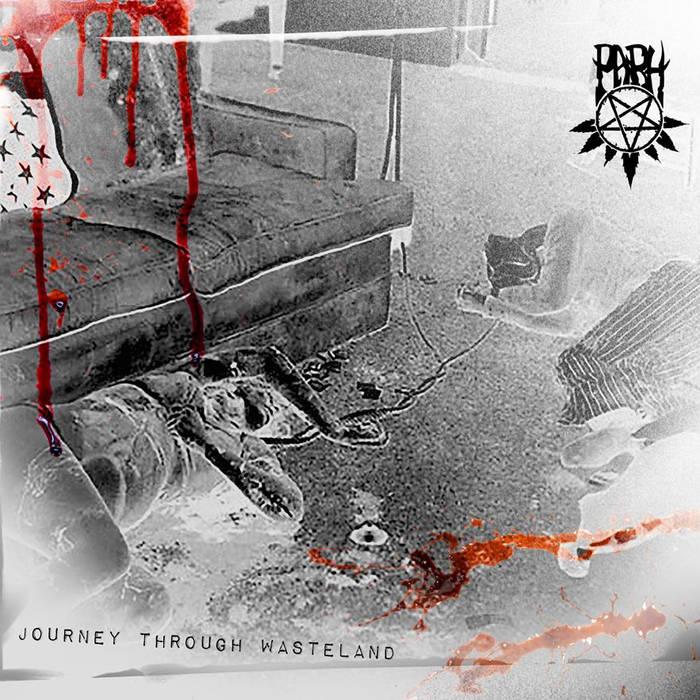 PARH - Journey Through Wasteland cover