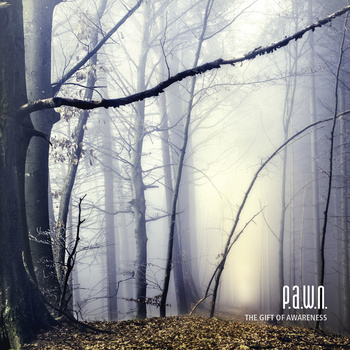 P.A.W.N. - The Gift of Awareness cover