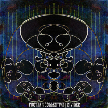 PROTEAN COLLECTIVE - Divided cover