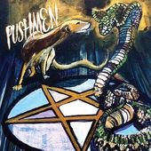 PUSHMEN - The Sun Will Rise Soon On The False And The Fair cover