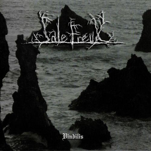 SALE FREUX - Vindilis cover