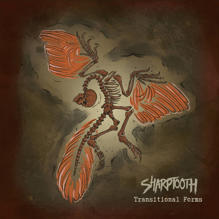 SHARPTOOTH - Transitional Forms cover