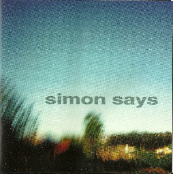 SIMON SAYS - Perfect Example cover
