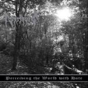 STRIBORG - Perceiving the World With Hate cover