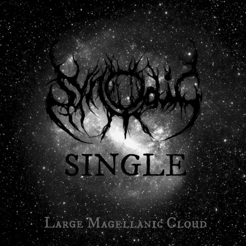 SYNODIC - The Large Magellanic Cloud cover