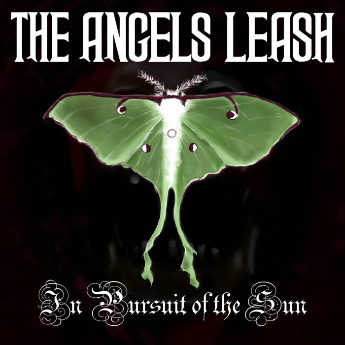 THE ANGELS LEASH - In Pursuit Of The Sun cover