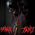19PARA Tanz album cover